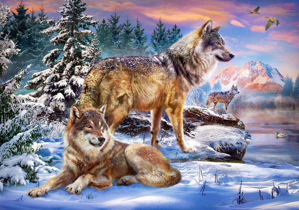 течение постеры с природой и животными ведомстве отмечают