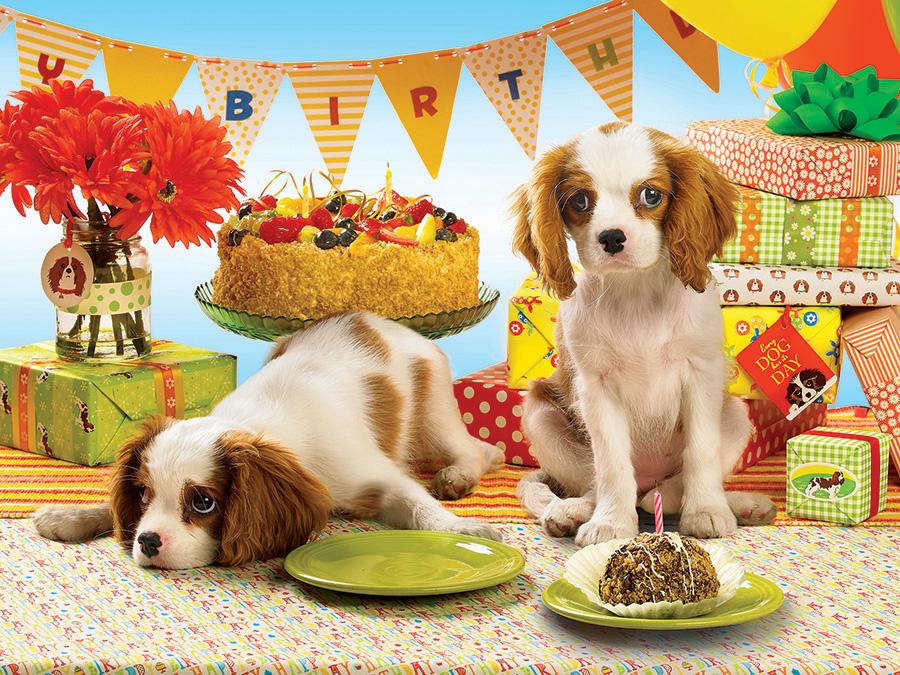 Розами тюльпанами, поздравления с днем рождения фото собаки