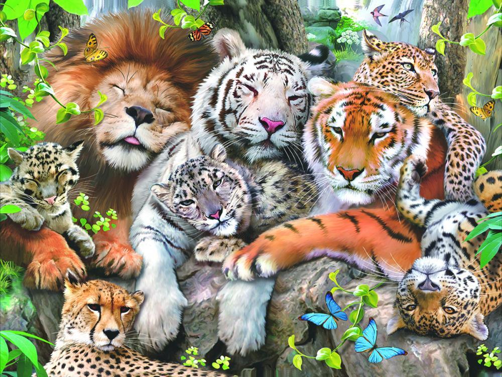 картинки на те тему какие прекрасные животные старших курсах кшесинская